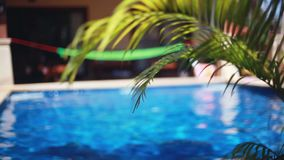 Beautiful landscape swimming pool with hammock and changes focus to palms leaves. Vacation concept. 1920x1080. Beautiful landscape swimming pool with hammock and stock video