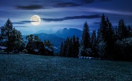 Beautiful landscape of Tatra Mountains at night. In full moon light. location Zakopane village, Poland. lovely scenery with forest on a grassy meadow and a Royalty Free Stock Photography