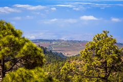 Beautiful landscape of Teide national park, Tenerife, Canary is royalty free stock photos