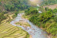 Beautiful landscape about terraced rice field with river  Royalty Free Stock Photography