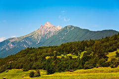 Beautiful landscape in the tirolean Alps, good smelling grass an Stock Image