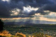 Beautiful landscape of tivoli agriculture plantation south italy royalty free stock photos