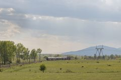 Beautiful landscape, train rides through a beautiful green field and trees, sun rays break through the clouds and dark blue sky stock photos