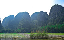 Beautiful landscape of Trang An in Tam Coc, a UNESCO World Heritage Site in Ninh Binh Province, Vietnam Stock Image