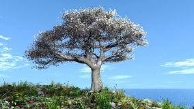 Beautiful landscape with tree Stock Photo