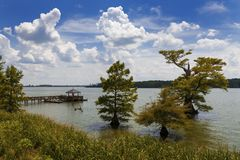 Beautiful landscape with trees and the Mississippi River, in the State of Mississippi. USA stock photo
