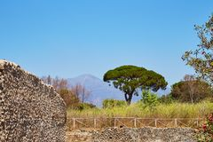 Beautiful landscape with trees and mountains. Nice view on Vesuvius volcano and high green grass trees stones and mountains with clear blue sky in Pompeii, Italy stock image
