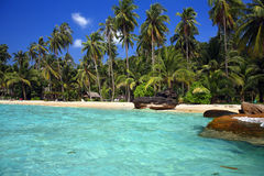 Beautiful landscape of tropical beach Stock Photos
