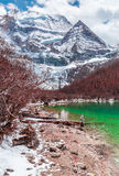 Beautiful landscape with turquoise lake, forest and mountains Stock Image