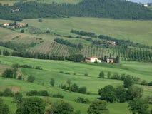 The beautiful landscape of Tuscany. Stock Photography