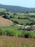 The beautiful landscape of Tuscany. Royalty Free Stock Photos