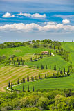 Beautiful landscape in Tuscany with curved road Royalty Free Stock Images