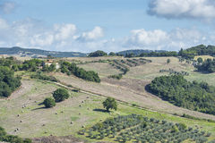 Beautiful landscape Tuscany Royalty Free Stock Photo