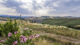 Beautiful landscape of Tuscany Stock Photos