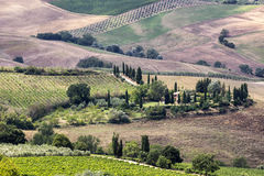 Beautiful landscape in Tuscany Royalty Free Stock Images