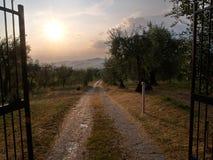 Beautiful landscape Tuscany Italy Stock Photography