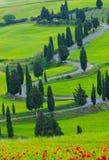 Beautiful landscape of Tuscany stock image