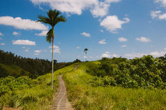 Beautiful landscape, Ubud, Bali Royalty Free Stock Photos