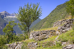 Beautiful Landscape in the Valle Maggia Stock Image