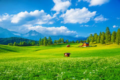 Beautiful landscape Stock Photo