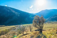 Beautiful landscape with valley and trees of Caucasus mountain p Royalty Free Stock Photos