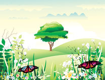 Beautiful landscape vector Stock Photos