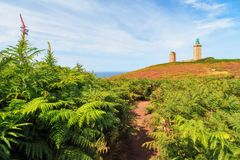 Path through ferns at Cap Fréhel. Beautiful landscape view of Cap Fréhel in Brittany, France, with its lighthouses and moorland with ferns, vibrant heather Stock Images
