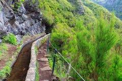 Levada footpath trail Madeira stock photo
