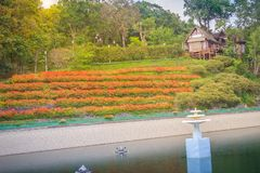 Beautiful landscape view of red flower garden and the small cott Royalty Free Stock Images