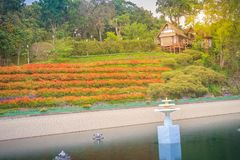 Beautiful landscape view of red flower garden and the small cott Stock Photography