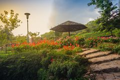 Beautiful landscape view with red flowering on the stone stairwa Stock Images