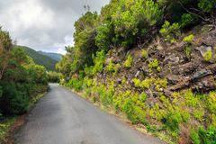 The road to hiking Madeira stock photography