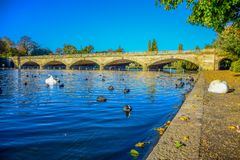 Landscape view of Serpentine Lake and Serpentine Bridge in Hyde Park, London, UK stock photo