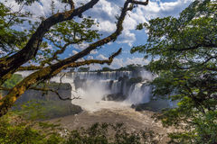 Beautiful landscape with views of the Iguazu Falls. Royalty Free Stock Image