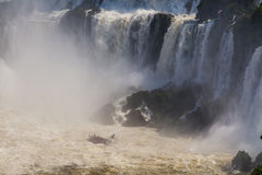 Beautiful landscape with views of the Iguazu Falls. Stock Photography