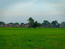 Landscape of a village royalty free stock images