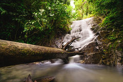 Beautiful landscape waterfall in Chiang Mai, Thailand Royalty Free Stock Photos