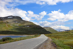 Beautiful landscape on the way from Bergen. Royalty Free Stock Photo