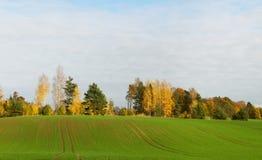 Beautiful landscape. Stock Images