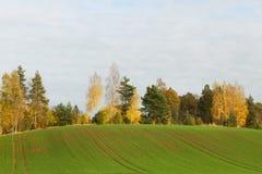Beautiful landscape. Royalty Free Stock Image