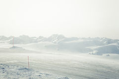 A beautiful landscape with a white, snowy road with safety poles in the winter Royalty Free Stock Images