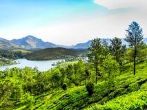 Beautiful landscape with wild forest and Periyar River, Kerala, India. THEKKADI, KERALA, INDIA - DEC. 15 2011: Beautiful landscape with colorful wild forest and Stock Image