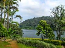 Beautiful landscape with wild forest and Periyar River, Kerala, India. THEKKADI, KERALA, INDIA - DEC. 15 2011: Beautiful landscape with colorful wild forest and Royalty Free Stock Images