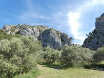 Free Beautiful Landscape With Olive Groves And Rocky Hills In Luberon In Provence Royalty Free Stock Photo - 162102605