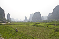 Beautiful landscape Yangshuo Royalty Free Stock Photos