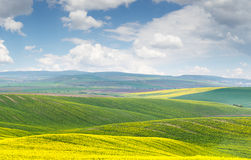 Beautiful landscape, yellow-green-blue colors of nature, sunny d Stock Image