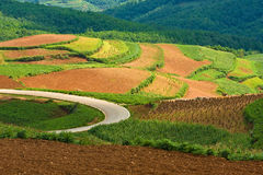 Beautiful landscape in yunnan, china (1) Royalty Free Stock Image