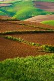 Beautiful landscape in yunnan, china (3) Royalty Free Stock Photo
