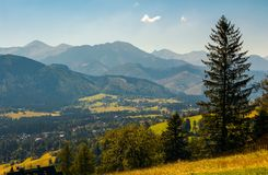 Beautiful landscape of zakopane valley. Popular tourist destination in hight tatra mountains. summer vacation in poland royalty free stock photo