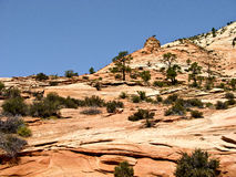 Beautiful landscape in Zion National Park, Utah Stock Photography